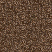 Cole And Son Senzo Spot Wallpaper 109 6028