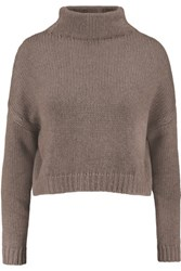Autumn Cashmere Ribbed Knit Turtleneck Sweater Brown
