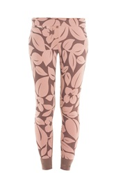 Stella Mccartney For Adidas Printed Tights Beige