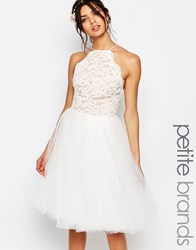 Jarlo Petite High Neck Lace Top Prom Skater Dress With Tulle Skirt White