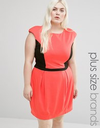 Koko Plus Dress With Contrast Panel Coral Black Pink
