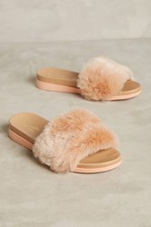 Anthropologie Seychelles Beyond Reason Pool Slides Pink