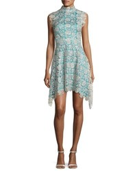 Catherine Deane Izzy Sleeveless Floral Lace Fit And Flare Dress Silver Blue