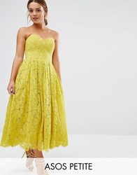 Asos Petite Sweetheart Lace Bandeau Midi Dress Yellow