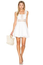 Endless Rose Sleeveless Fit And Flare Mini Dress White