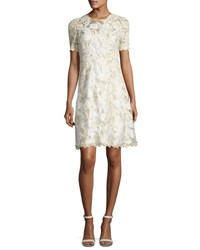 Elie Tahari Larsa Short Sleeve Lace Dress Cream