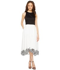 Tahari By Arthur S. Levine Tea Length Color Block Dress Ivory White Black Women's Dress