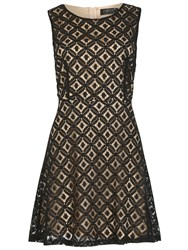 Pussycat Sleeveless Two Tone Lace Skater Dress Nude