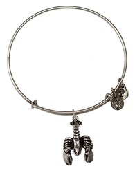 Alex And Ani Lobster Charm Bangle Silver