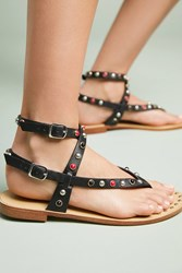 Bibi Lou Studded Gladiator Sandals Black