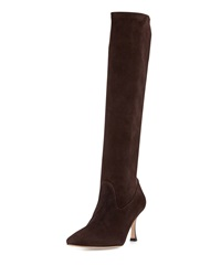 Manolo Blahnik Pascalare Stretch Suede Point Toe Knee Boot Dark Brown