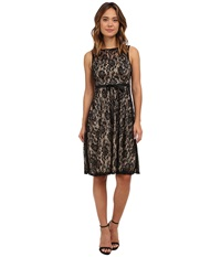 Gabriella Rocha Faith Lace Sleeveless Dress Black Tan Women's Dress