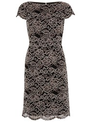 Gina Bacconi Vintage Corded Lace Dress Dark Beige