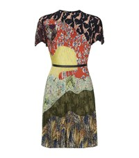 Valentino Garden Party Pleated Dress Female Green