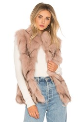 Jocelyn Fox Fur Sections Vest With Collar Blush