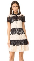 Red Valentino Striped Lace Mini Dress Ivory Black