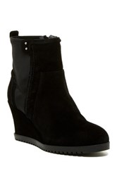 Taryn Rose Beula Wedge Zip Bootie Black