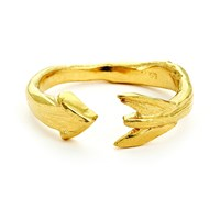 Chupi Follow Your Dreams Arrow Ring In Gold