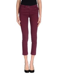 Sessun Casual Pants Garnet