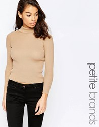 New Look Petite Rib Sweater Beige