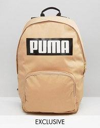 Puma Exclusive To Asos Logo Backpack In Sand Sand Brown