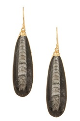 Janna Conner Morowa Orthoceras Fossil Drop Earrings No Color