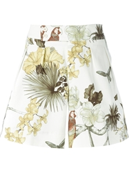 Etro Floral Butterfly Bird Print Shorts White