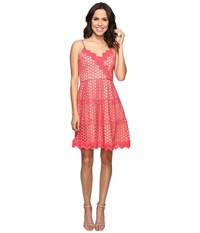 Adelyn Rae Lace Fit And Flare Dress Coral Nude Women's Dress Beige
