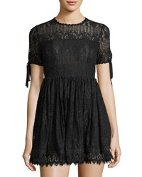 Romeo And Juliet Couture Illusion Yoke Lace Fit Flare Dress Black