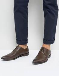 Frank Wright Wing Tip Brogue Shoes In Brown Leather Brown