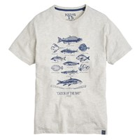 Joules Catch Of The Day Graphic Print T Shirt Crem Marl