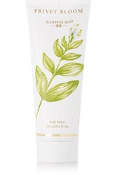 Hampton Sun Privet Bloom Body Lotion Colorless