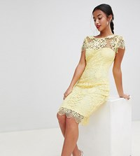 Paper Dolls Petite Cap Sleeve Sweetheart Detail All Over Crochet Lace Pencil Dress Yellow