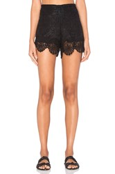 Nightcap Seashell Lace Short Black