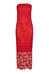 Topshop Petite Bandeau Lace Midi Dress Red
