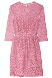 Moschino Cheap And Chic Cotton Blend Lace Dress