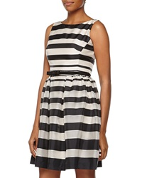 Taylor Striped Taffeta Fit And Flare Cocktail Dress Ivory Black