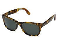 Toms Beachmaster 301 Havanna Tortoise Fashion Sunglasses Brown
