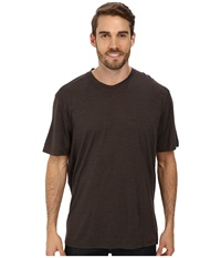 Smartwool Nts Micro 150 Pattern Tee Taupe Men's T Shirt