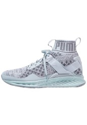 Puma Ignite Evoknit Neutral Running Shoes Quarry Quiet Shade Silver Grey