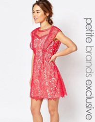 Little Mistress Petite All Over Lace Skater Mini Dress With Frill Sleeve Detail Coral