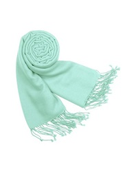 Forzieri Solid Pashmina And Silk Fringed Shawl Aqua