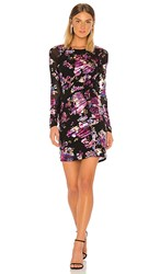 Parker Briza Dress In Black Purple Pink. Abby Floral