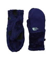 The North Face Denali Thermal Mitt Garnet Purple Surf Green Extreme Cold Weather Gloves