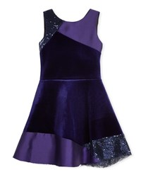 Zoe Velvet Colorblock Sleeveless Dress Purple