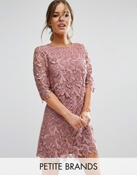 Little Mistress Petite All Over Premium Lace Mini Crochet Pencil Dress Apricot Pink