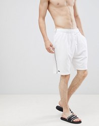 Lacoste Premium Lounge Shorts In Terry White