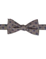 Vince Camuto Dotted Bow Tie Taupe