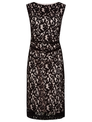 Planet Two Tone Lace Dress Black Oyster