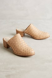 Anthropologie All Black Lox Woven Mules Pink